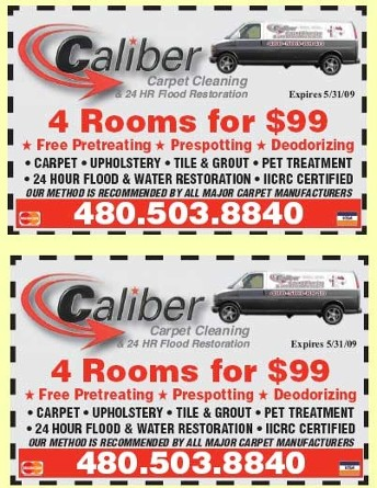 Carpet Cleaning Savings
